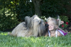 little_girl_briard3