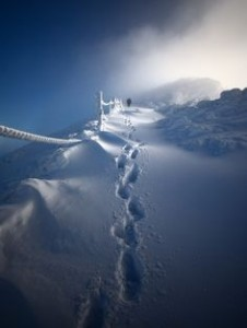 winterscape1
