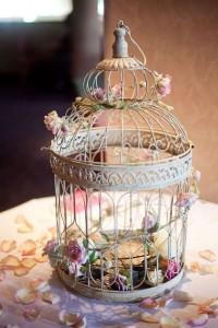 birdcage101
