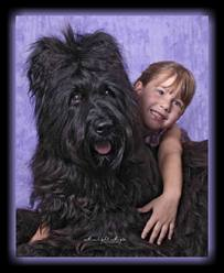 briard and girl